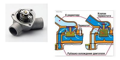 система охлаждения ситроен берлинго 1.6 hdi